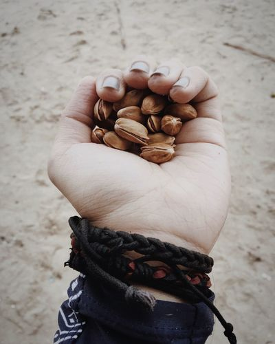 Cropped hand of woman holding pistachios