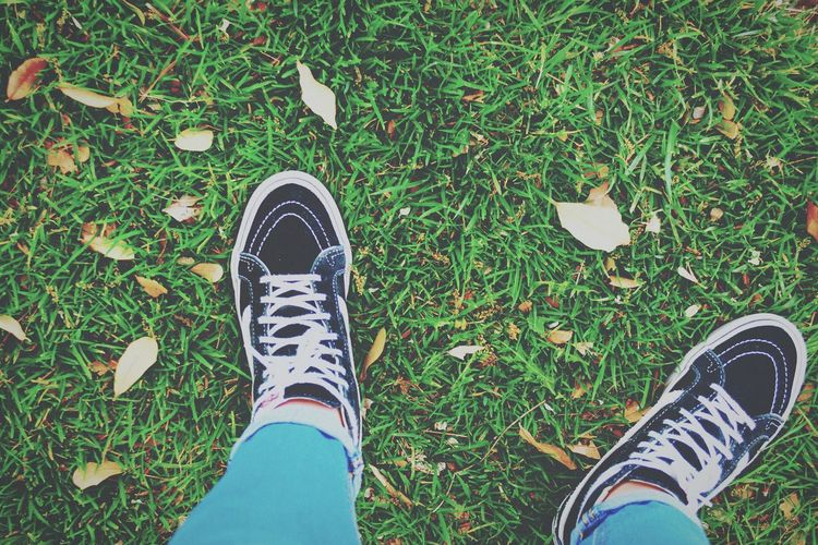 Human Leg Grass Shoe Human Body Part Standing High Angle View Real People Two People Jeans Day Canvas Shoe Green Color Men Women Togetherness Outdoors Adult Nature People Vans Vans Off The Wall Vans High Tops Fall Fall Colors Asthetic