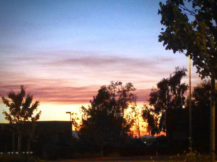 Sunset_collection Sunset Silhouettes California Vallejo Calisky From Where I Stand From My Point Of View Enjoying Life