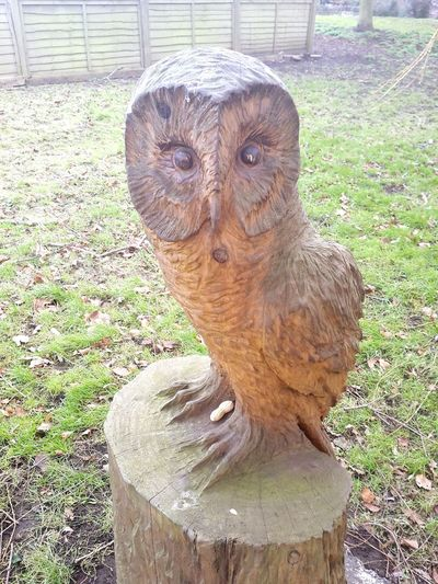 Wooden Sculpture Owl Hand Carved