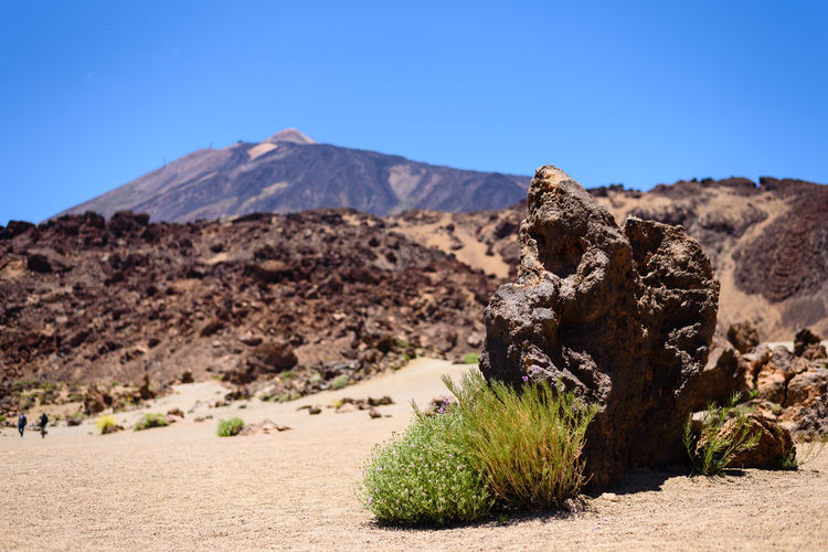 Shot of the El Teide volcano on Tenerife (Spain) with a dry desert landscape in the foreground Desert El Teide Grass Lonely Nature Rock Travel Traveling Blue Sky Desert Beauty Dry First Eyeem Photo Landscape Mountain Rocks Rubble Sand Scenics Stones Summer Tenerife Travel Destinations Vast
