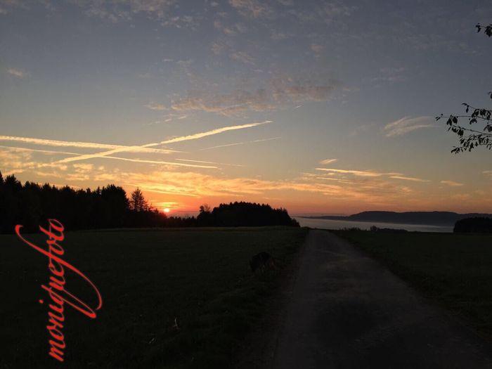 Es wird wieder ein schöner Tag 💕💓 Monique52 Sonnenaufgang Sonnenstrahlen Sunset Landscape Silhouette Südschwarzwald Hochrhein Outdoors Spazieren Und Fotografieren Iphonephotography