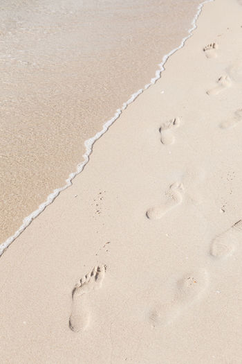 Beach Close-up Day FootPrint High Angle View Nature No People Outdoors Paw Print Sand Track - Imprint