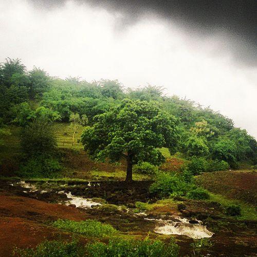 Monsoon Clouds Waterfall Jungle forest woods tree naturegram naturehippys skyporn india_igers incredibleindia instaindia india_igers igdaily igaddict like4like follow4follow vscoindia vscogood vscoclick igramming_india ig_indiashots samsunggrand2 landscape chhindwara