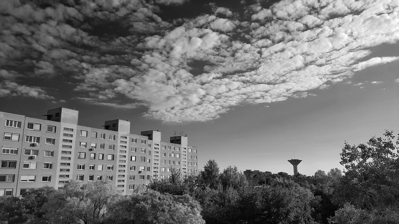 architecture, building exterior, sky, outdoors, built structure, tree, city, low angle view, day, no people, nature
