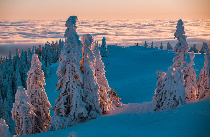 Panoramic view of snow covered landscape against sky during sunset