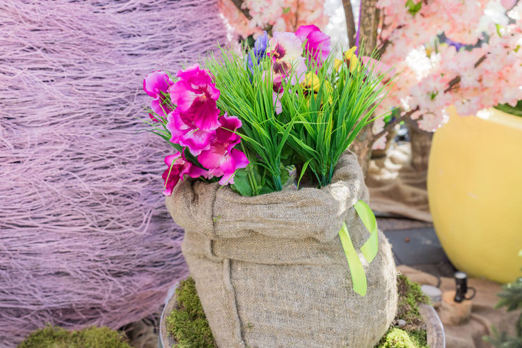 Close-up of pink flower pot on tree trunk