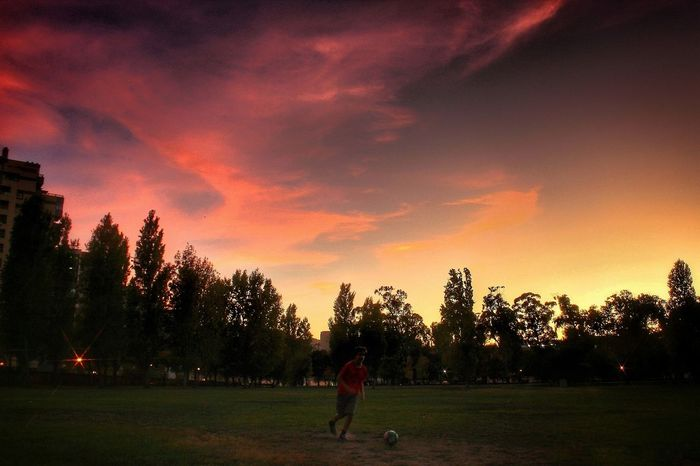 Tree Sunset Only Men One Person One Man Only People Sport Soccer Grass Nature Sportsman Sky