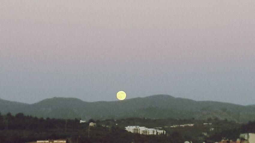 Full Moon Taking Photos Moon Nature