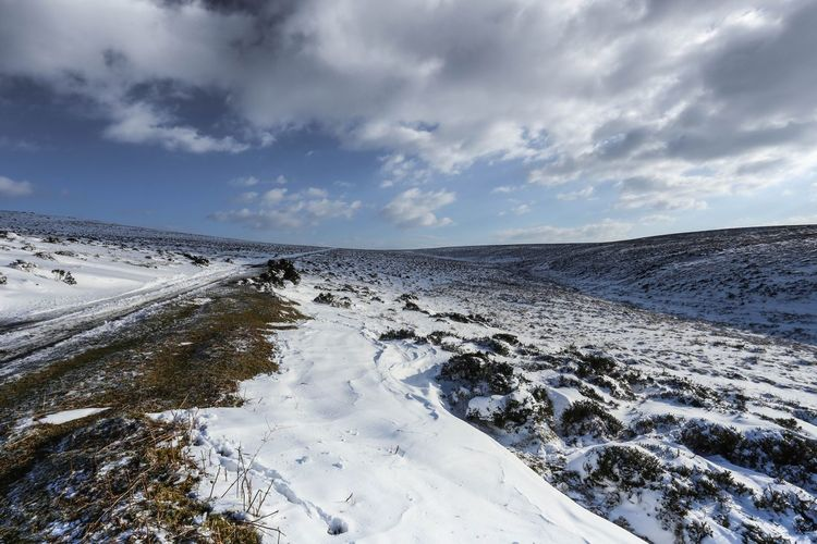 Photooftheday All_shots Exposure Dartmoor Dartmoor National Park Clouds Devon Tree Walking Frozen Bush Ice Cold Walk Alone Snow Moors Baron  Weather Condition Frost Arctic Winter Snow Covered Snowcapped Snowcapped Mountain Polar Climate Tire Track FootPrint Ice Crystal