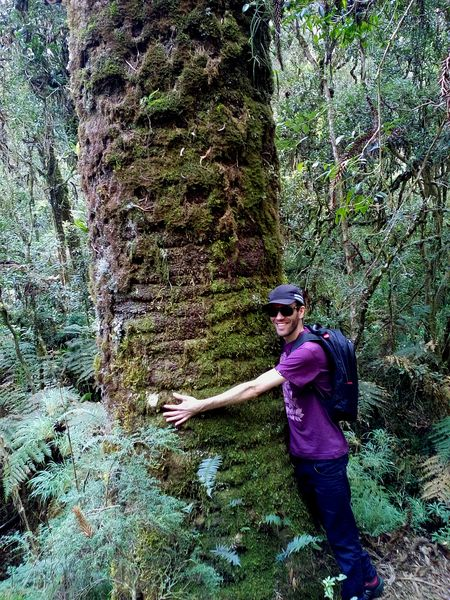 That's Me! Brazilian Guy Hugging A Tree Araucaria Beautiful Nature Hortoflorestal Camposdojordao São Paulo, Brasil Mata Atlântica Nature_collection Faces Of EyeEm