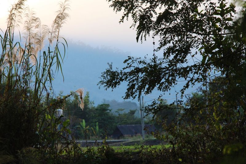 Outdoors No People Landscape Silhouette Village Countryside North Thailand South East Asia