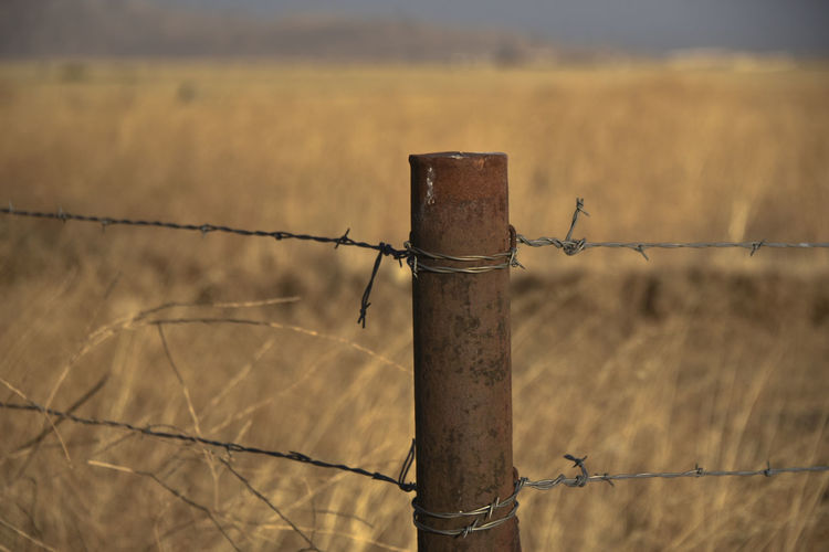 Barbed Wire Fence Barrier to a Field Metal Post Barbed Wire Barricade Barrier Close-up Day Field Focus On Foreground Metal Nature No People Outdoors Protection Razor Wire Safety Security Sky Spiked Wooden Post