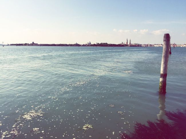 Venice Mad Hatter Water Sea Nature Sky Tranquil Scene Beauty In Nature Outdoors Scenics No People Tranquility Waterfront Clear Sky Day Horizon Over Water Architecture Seashore
