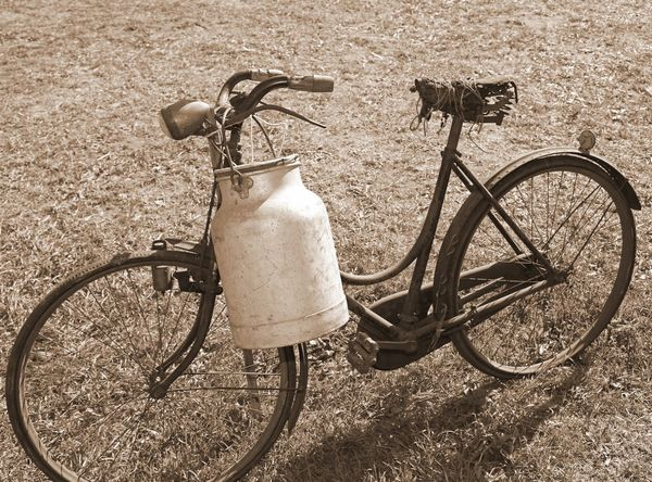 ancient milking bicycle with milk can and ancient Ancient Delivery Milk Can Milkman Past Retro Service Transport Wheel Bicycle Bicycling Bike Cycling Milk Milk Churn Nostalgia Old Retro Styled Tranport Vintage Vintage Photo