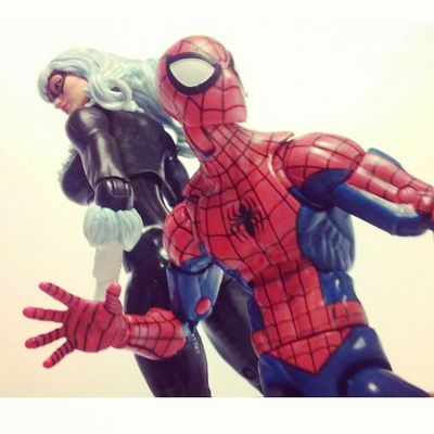 Spidey and cat ready to kick ass! Spidey Marvellegends Hasbro Disney Spideyverse Amazingspiderman Spiderman BLackCat Feliciahardy Peterparker Favoritecouple Manchild Figurelife Figurecollection Figurelover Collecting Collector Webwarriors Webhead Infinitieseries Baf Mcu Marvelcomics