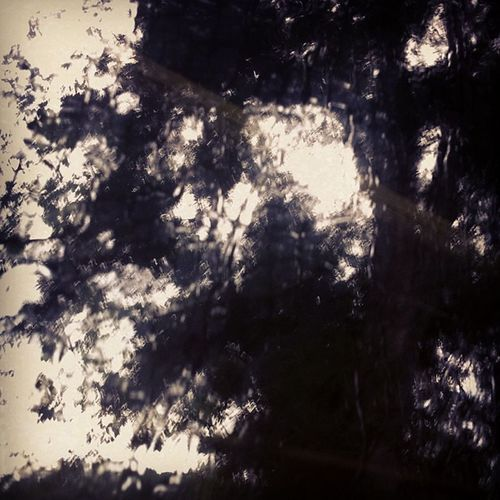 影。情 Rain Day