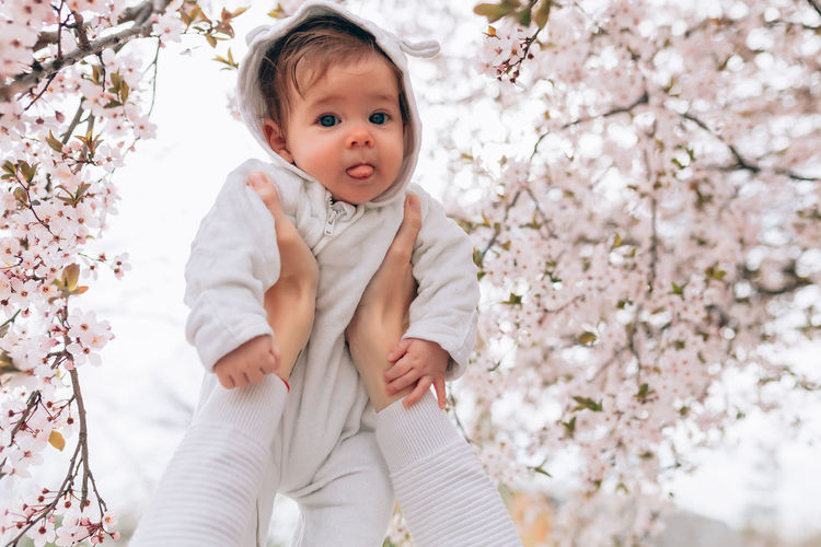 Cropped hands holding girl against cherry blossom tree