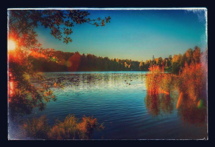 ArtWork Beautiful Day Landscape Sony