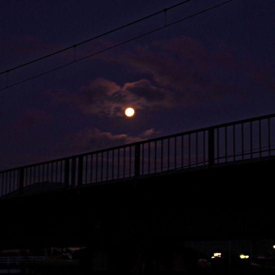 中秋の名月 たたずむイズム Moon Light 散歩 Relaxing