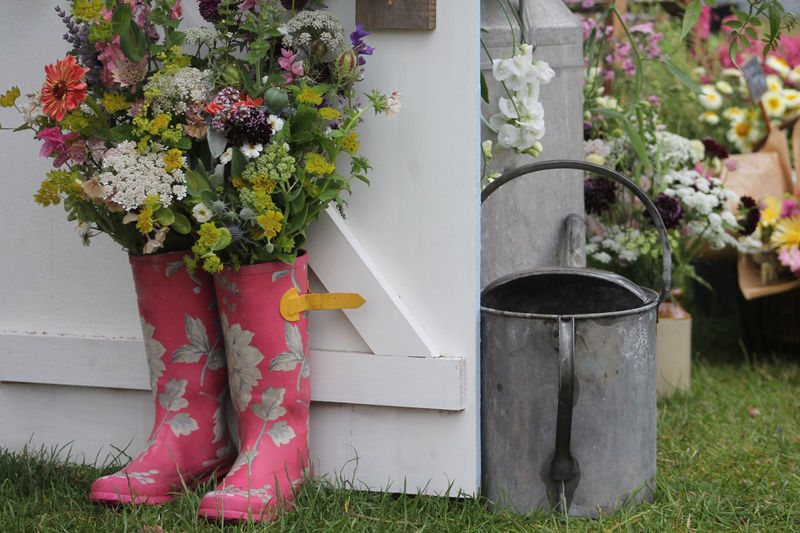 In The Garden Fresh Flowers Garden Garden Patch Grass Pink Tin Can Tin Watering Can Vintage Watering Can Watering Can Wellington Boots