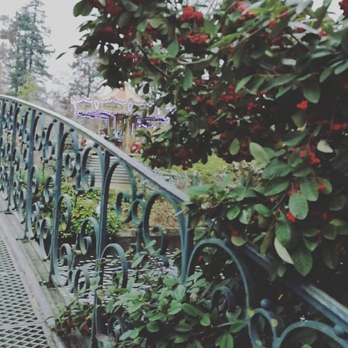 Jardinpublic