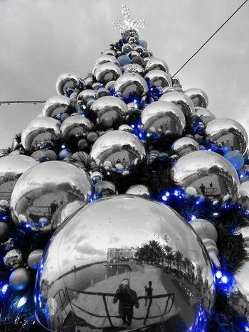 Hanging Out Reflection Taking Photos Christmas Outdoors Christmas Tree Christmas Lights
