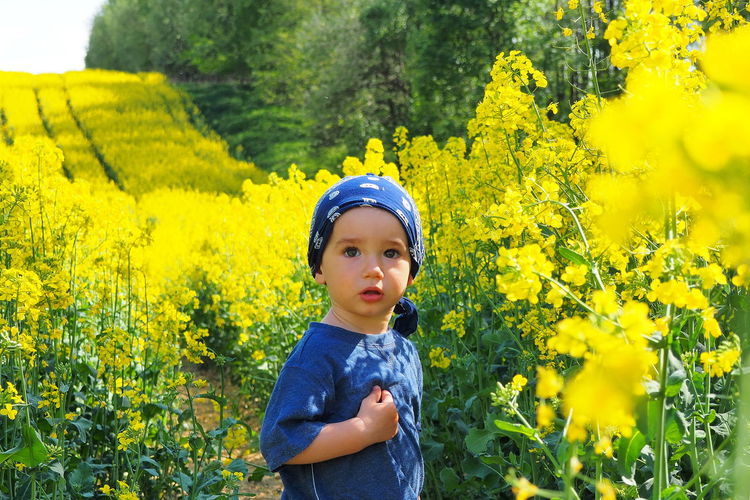 Olympus Om-d E-m10 Olympus OM-D E-M10 Mark II Beauty In Nature Rapeseed Rapeseed Field Rapes Yellow Yellow Background Yellow Flowers Little Boy Poland Poland Is Beautiful Children Of The World Moments EyeEm Best Shots Memories Beauty In Nature Innocence Children Photography Childhood Memories Childhood Boy Children's Portraits EyeEmNewHere Visual Creativity #NotYourCliche Love Letter