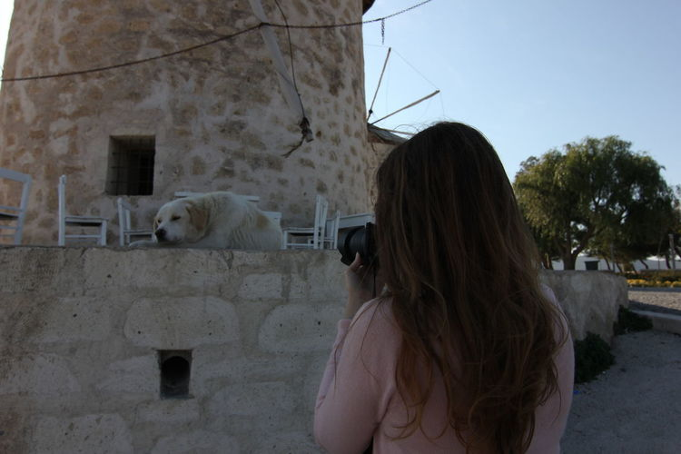 Rear view of woman photographing dog through digital camera