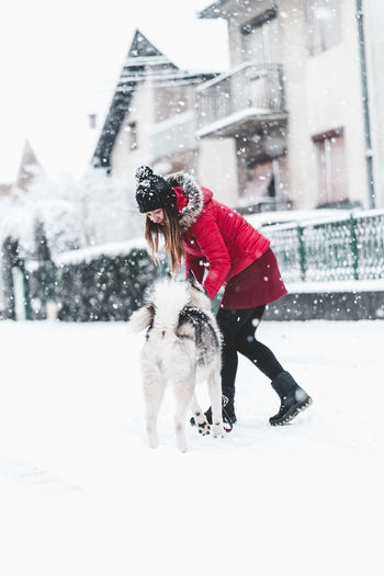Husky Snow Winter Cold Temperature Real People Pets Mammal Canine Dog Full Length Clothing Snowing Warm Clothing Domestic Domestic Animals One Animal Women One Person Outdoors Extreme Weather Pet Owner
