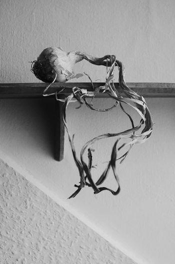 zwiebel Black & White Black And White Blackandwhite Blackandwhite Photography Close-up Interior Onion Schwarz & Weiß Schwarzweiß Shadows & Lights Shelf Still Life StillLifePhotography Wall Zwiebel