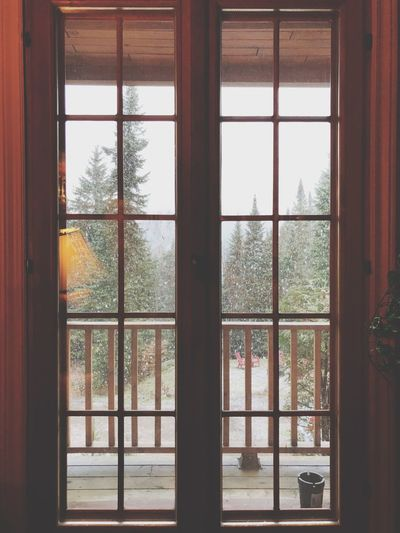 Let it snow EyeEmNewHere Rural Scene Snow Window Indoors  Transparent Glass - Material Home Interior No People Day Architecture House Tree Nature Glass Window Frame Built Structure Sky