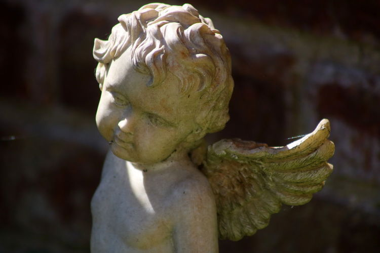 Close-up of angel statue