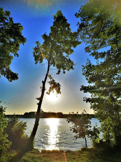 Beauty In Nature Day Growth Idyllic Lake Land Nature No People Non-urban Scene Outdoors Plant Reflection Scenics - Nature Sky Sunlight Tranquil Scene Tranquility Tree Water