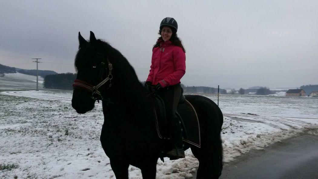 I Love Horses Lilli💝 Horses Horse Enjoying Life Cheese! IPhoneography