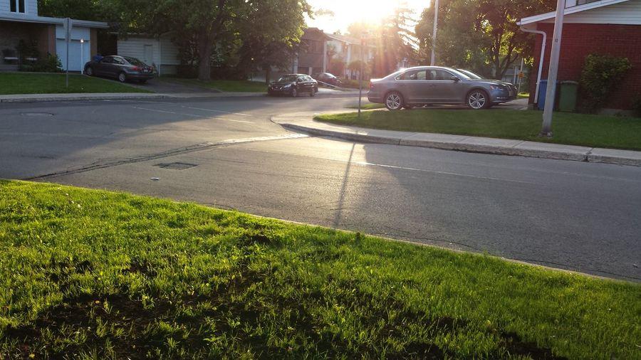 a sunny road Sun, Sunny, Sunshine Nature, Neighbourhood Road Sunset✨trees✨