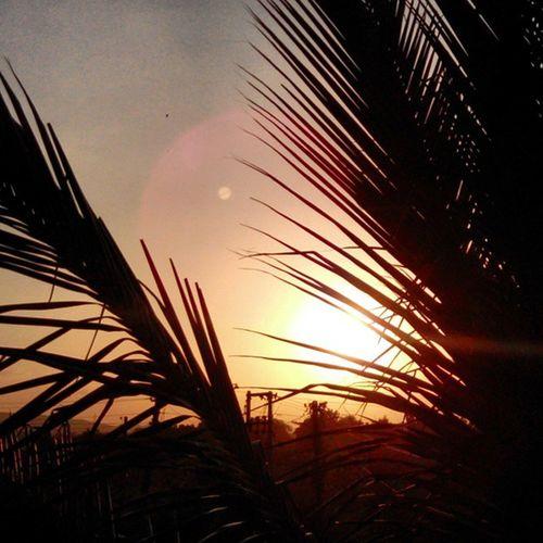 Sunset Sunsets Cool_sunshots Sunshots Sunrise_sunset Sunsetindia Sunsetscenery Nature Sunrisesunset Sunsetuniverse Sunsetmadness Coolsunset Sunsetclick Sunsetandsunrise Sun Tagsforlikes Tflers Beautiful Sky Skyporn Cloudporn Nature Clouds Horizon Photooftheday instagood gorgeous igersoftheday_ view all_sunsets