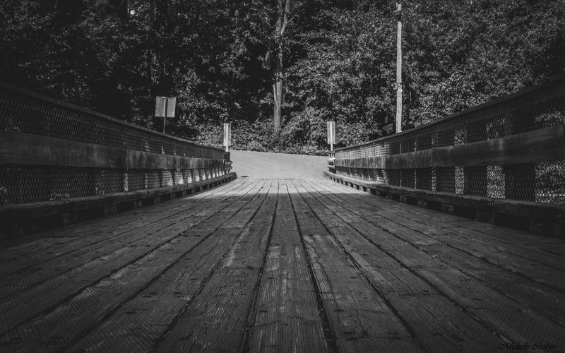 Old bridge Rural Scene Nikonphotography Bnw EyeEmNewHere Nikon Blackandwhite The Way Forward Direction Tree Nature Plant Diminishing Perspective Connection Transportation Day No People Architecture Built Structure Bridge Outdoors Bridge - Man Made Structure