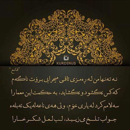 ماموستا_قانع ،شاعر مربوانی قانع_را_باید_خواند @kurdinusسپاسی تایبت بو