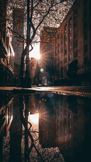 Reflection of building in rain puddle at sunrise