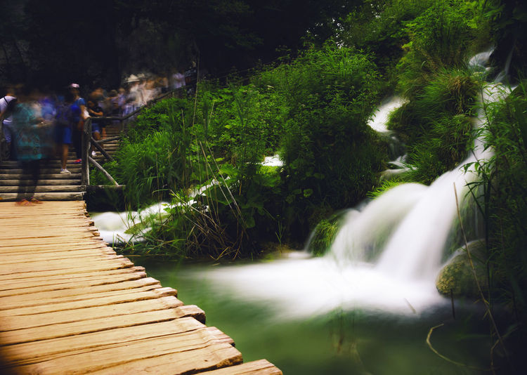Scenic view of waterfall in park