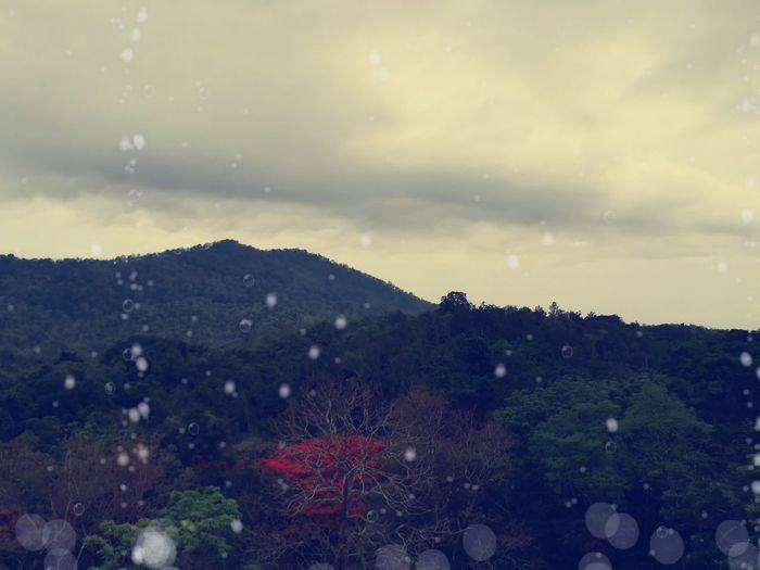 raining hills