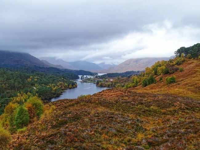 Mountain Cloud - Sky Water No People Outdoors Mountain Range Nature Tranquility Autumn Landscape Scenics Beauty In Nature Travel Destinations Scottish Highlands Scotland Tree Growth Nature Glen Affric TreesForLife United Kingdom Day
