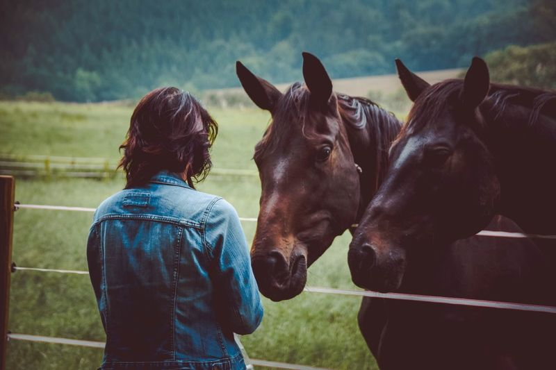 The Horse Whisperer Portrait Woman Myself Portrait Of A Woman Photographie  Photography Foto Photo Fotografie Portait Romantic Horse Horses Nature Animals