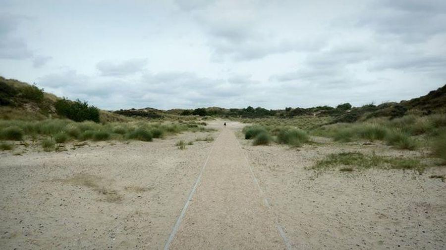 Lonely wanderer Beach Nature Autumn Melancholy The Environmentalist – 2014 EyeEm Awards