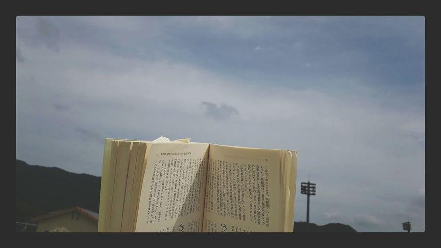 公園、移動した。青空読書、最高に気持ちいい Reading A Book