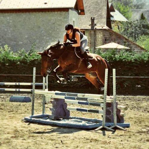 Manque 🐴🐎 Jump Alancienne Manque Concours OneYearAgo Terracotta Alamaison Love