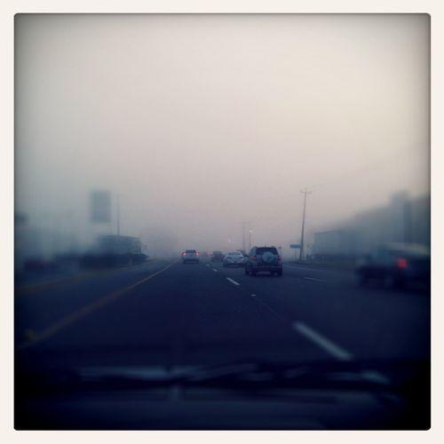 Neblina de mañana.