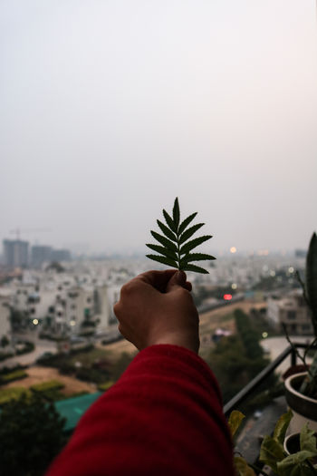 Midsection of person holding plant against sky