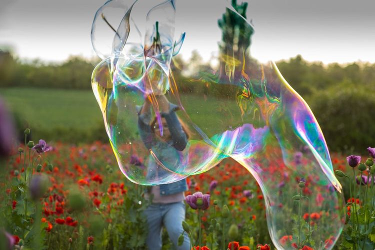 View of bubbles in field